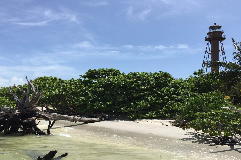 Hier sehen Sie den Lighthouse Beach auf Sabine Island in Florida direkt vor dem Leuchtturm an der Golfküste Floridas